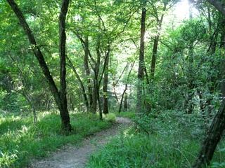 Peter_Barnes_Lake_Houston_Park_trail